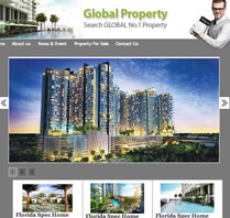 Website Theme for Property